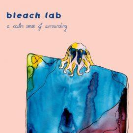 Bleach Lab Album Art